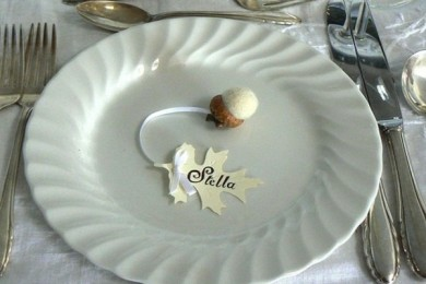 http://www.intimateweddings.com/blog/autumn-wedding-ideas-acorns/