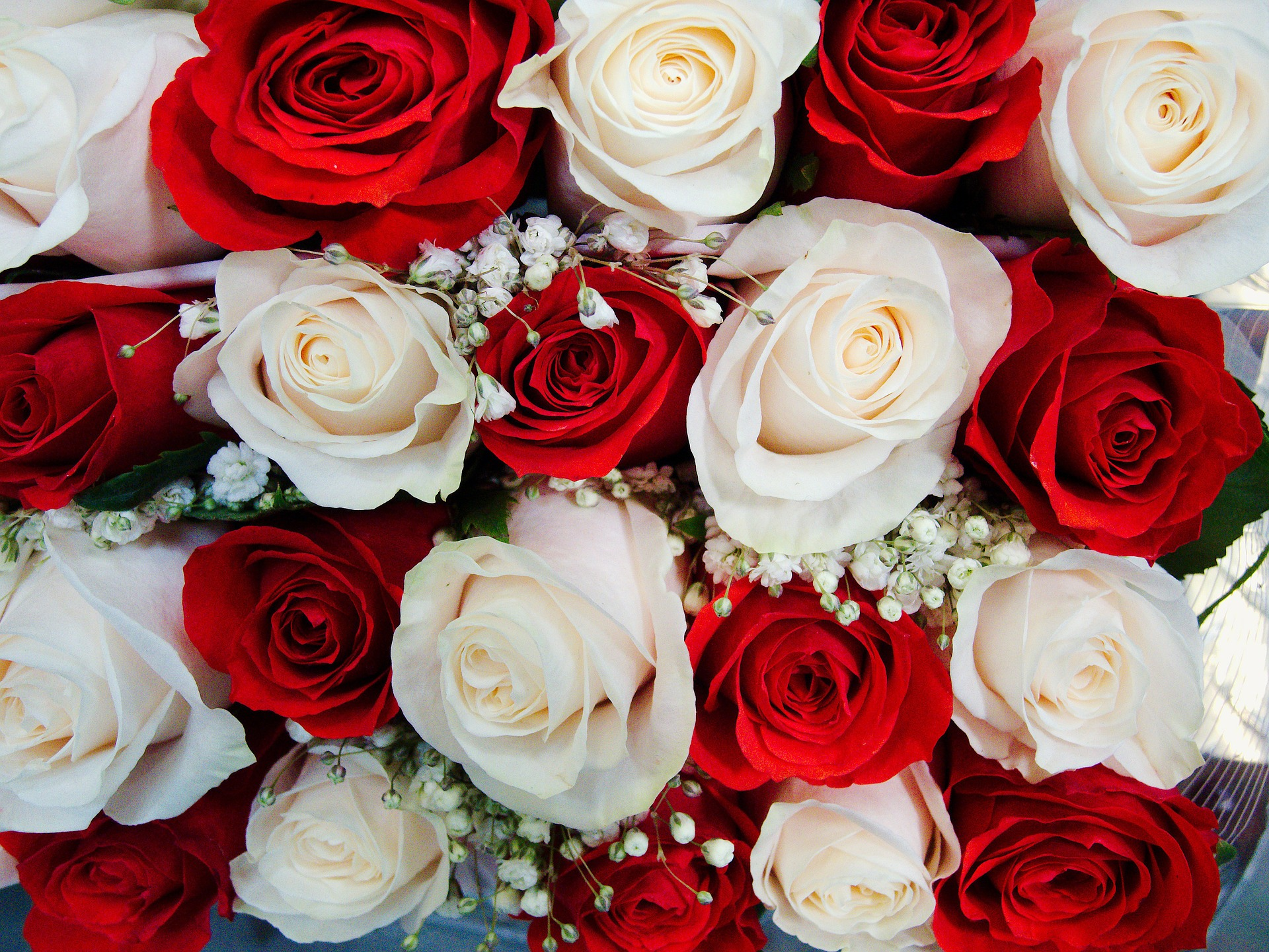 13 beautiful wedding flowers their meanings north west brides whilst the red rose may be clich its become this way for a reason it resembles true love which is a brilliant message to send your significant other on izmirmasajfo